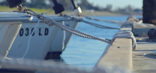 pier-rope-fish