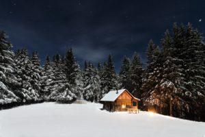 wood-cottage-wood-house-cabine